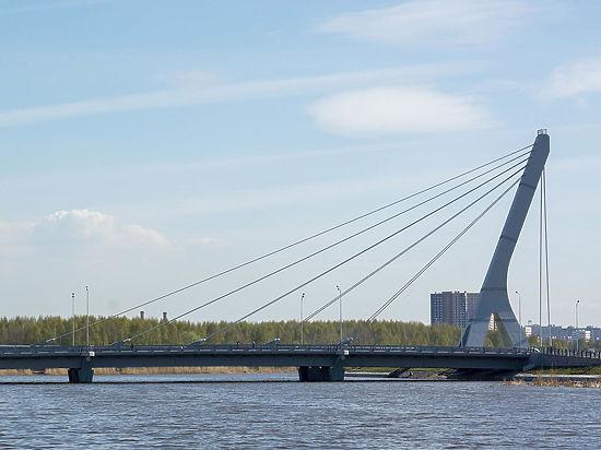 У жителей Петербурга решили не спрашивать мнения про мост Кадырова
