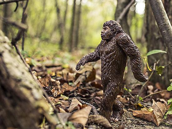 Ученые: в ДНК людей остается все меньше генов неандертальцев