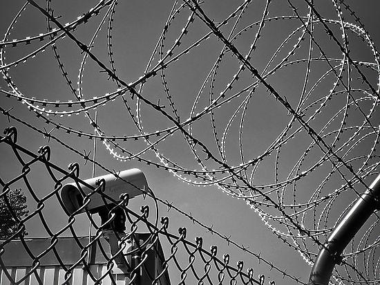 «Там бьют аккуратно»: член СПЧ описал применявшиеся к Дадину пытки
