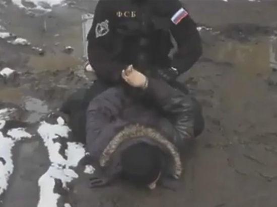 В Петербурге и Москве предотвращены страшные теракты по парижскому сценарию