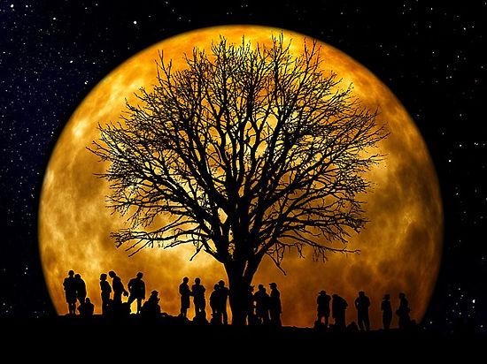 Сегодня жители Земли увидят самую большую луну за 70 лет