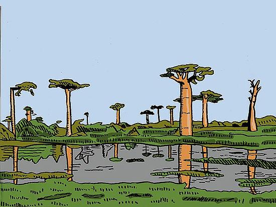 Ботаники нашли самое высокое тропическое дерево в мире