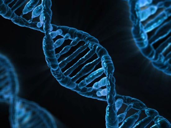 Открыто антитело, нейтрализующее 98% штаммов ВИЧ