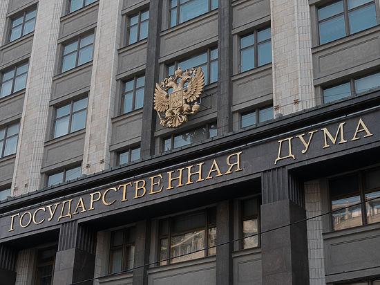 В Госдуме решили наказывать активистов за нападки на объекты искусства