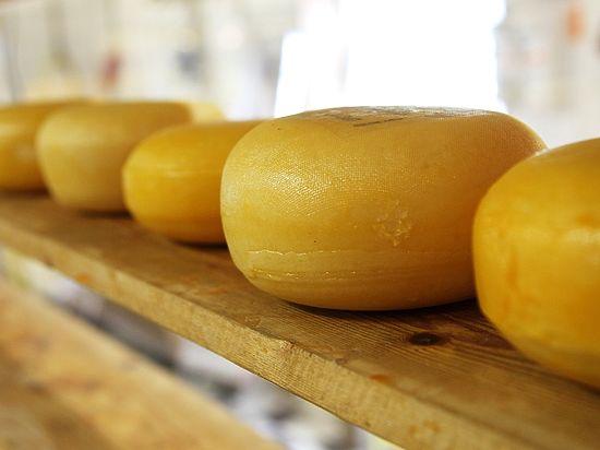 Ученые: сыр и бобы продлевают жизнь