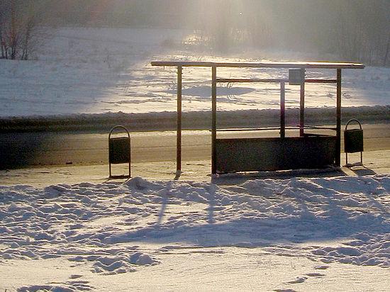 Мама девочки, которую высадили из автобуса на мороз, просит не увольнять кондуктора