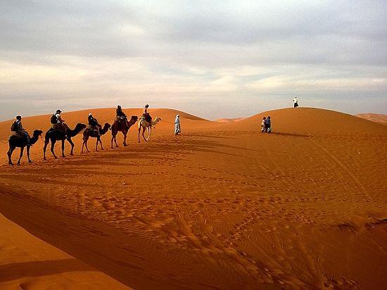 Ученые назвали неожиданную причину, по которой Сахара стала пустыней