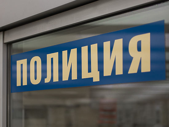 Мужчину, называвшего себя «сыном Путина», увезли отКремля впсихлечебницу