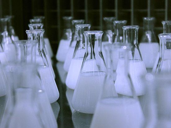 Биологи и программисты сделали шаг к созданию «эликсира вечной жизни»