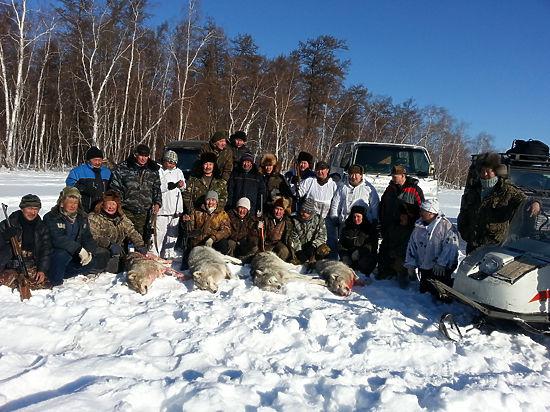 «Снял скальп в два замаха»: медведи и волки все чаще атакуют россиян