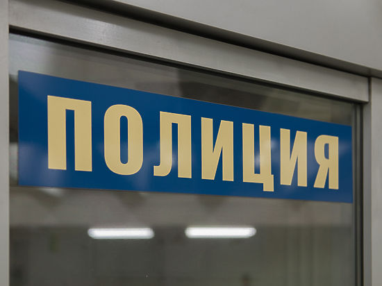 Москвичка выбросила тело бабушки напомойку через 1,5 месяца после убийства