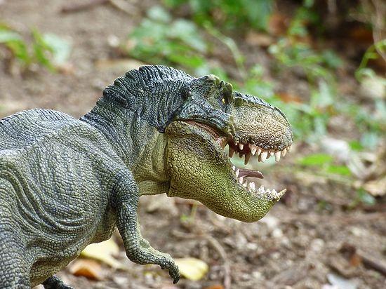 У некоторых динозавров были молочные зубы