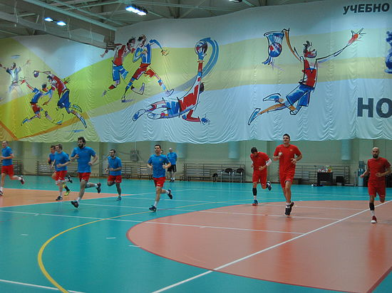 Сергей Шишкарев переизбран президентом Федерации гандбола РФ