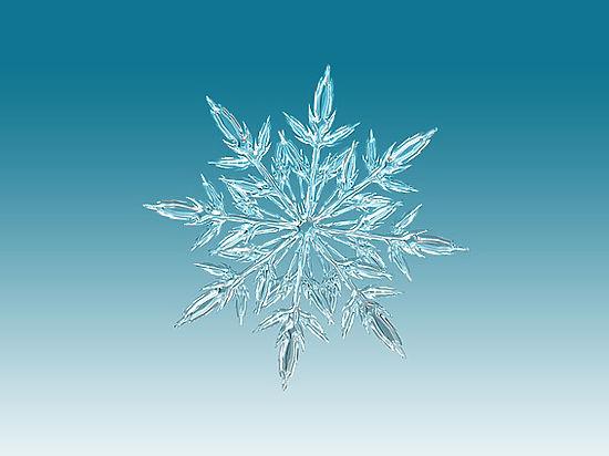 Ученый подсчитал количество снежинок вприроде