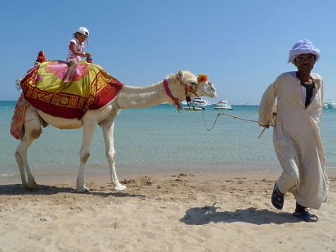 2668283 8650565 - Российские курорты могут не выдержать конкуренции с Египтом