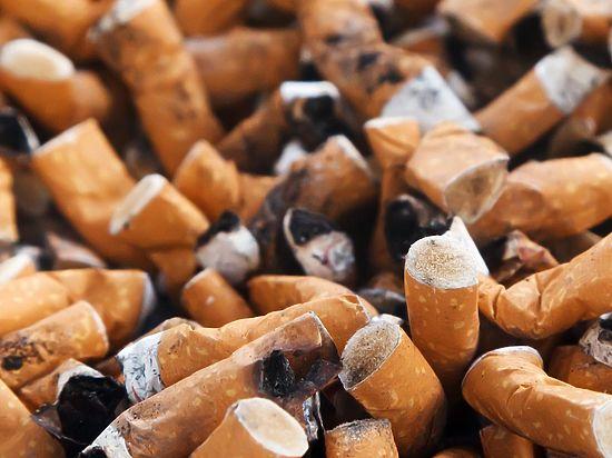 Россия будет как Бутан: ВОЗ одобрил войну с курильщиками