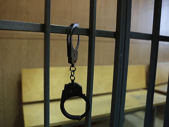 Воспитательницу Чудновец, осужденную зарепост, отправили вкарцер на15 суток