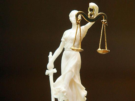 Баталина: ЕСПЧ продемонстрировал настоящую суть побуждений американских усыновителей