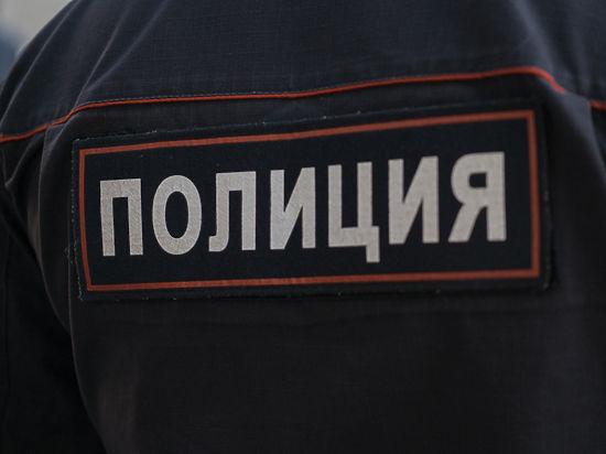 Коллекторский беспредел вПодмосковье: задолги похищена 16-летняя дочь предпринимателя