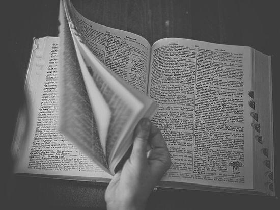 Разработан новый толковый словарь: он объяснит даже матерные слова