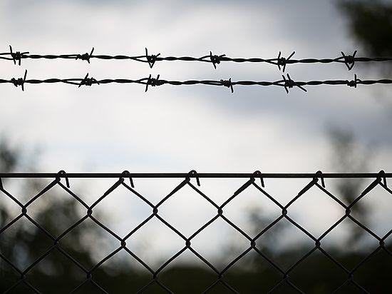 МВД республики Белоруссии начало проверку введенных Россельхознадзором ограничений
