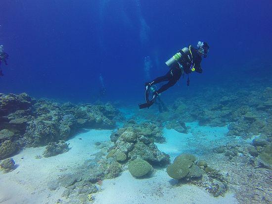 Подтверждено существование «затерянного континента» на дне Индийского океана