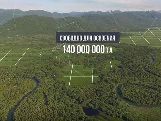 По дальневосточному гектару в руки: власть услышала Достоевского
