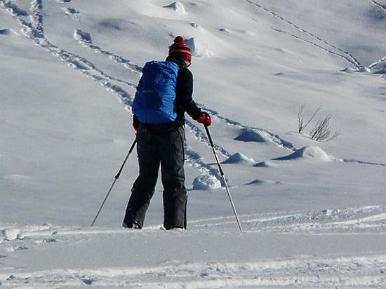 Грабитель прошел на лыжах 30 километров ради 2 тысяч рублей