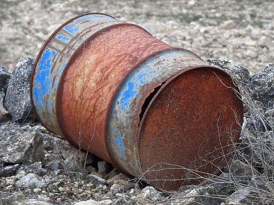В Челябинске у ОНФ может появиться эко-партнер
