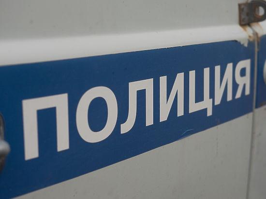 Грабители отобрали у безработного москвича сумку с 10 млн рублей