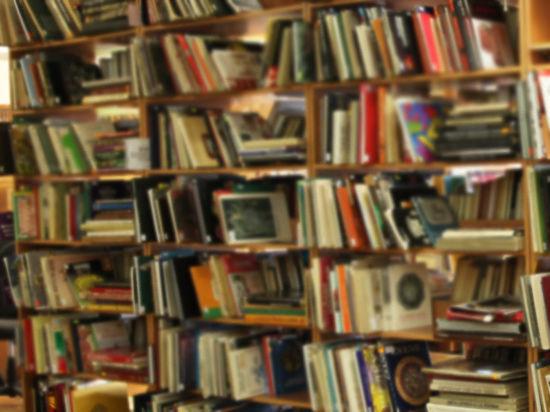 «Эти книги нежелательны»: «Рыцарей Новороссии» попросили с Минской книжкой ярмарки
