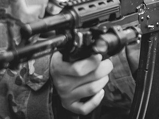 Власти Крыма: командиры ВСУ решили навести порядок в Херсонской области