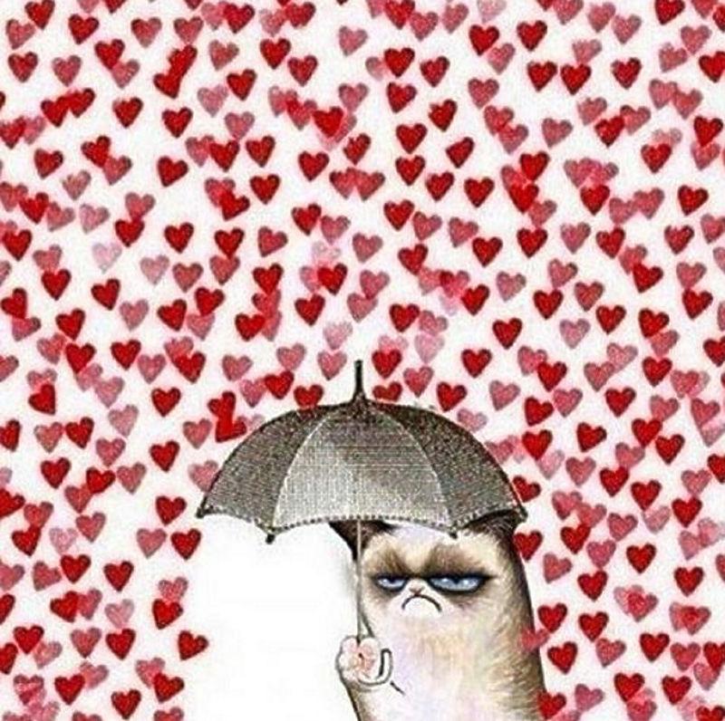 """Как известно, действие рождает противодействие. Пользователи соцсетей создали оппозиционное движение в пику Дню святого Валентина, """"басурманскому празднику"""", и дали волю фантазии, изготовив """"антивалентинки"""". Черный цвет, Grumpy Cat и сарказм оказались лучшими помощниками в этом непростом деле."""