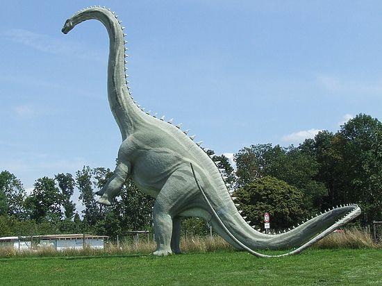 Останки беременной рептилии перевернули представления ученых о размножении древних ящеров