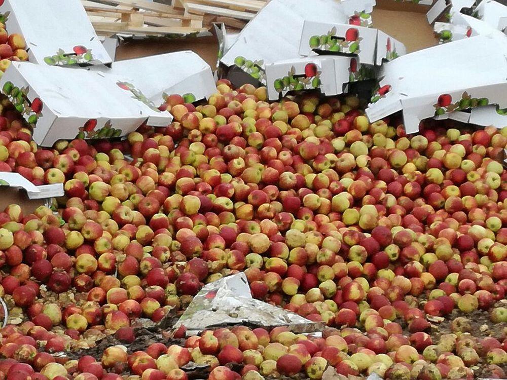 17 февраля 2017 года на мусорном полигоне в Руднянском районе Смоленской области была уничтожена крупная партия санкционных фруктов общим весом 75 тонн. Это три партии польских яблок весом более 61 тонны, более 13 тонн киви и почти три тонны клубники из Греции. Все арестованные транспортные средства принадлежали белорусским перевозчикам. Всего в этом году смоленскими таможенниками уничтожено почти 200 тонн санкционных товаров.  С момента введения указа о санкциях Смоленской таможней уничтожено 170 партий товаров общим весом 1484 тонны, а подразделением Россельхознадзора по Брянской и Смоленской областям  -  92 партии товаров весом 1282 тонны.