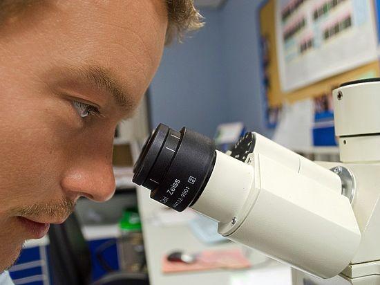 «Странные» организмы подарили ученым надежду найти жизнь за пределами Земли