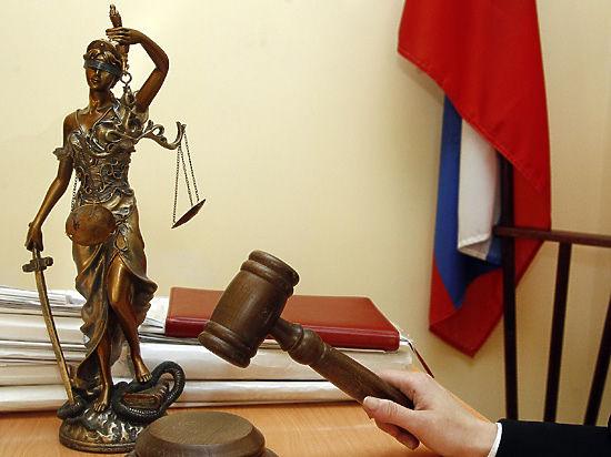 Верховный суд постановил пересмотреть дело Чудновец, за которую просили Путина