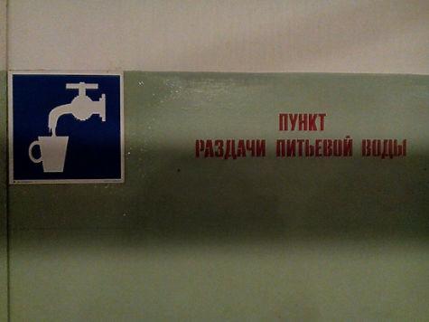 В московские бомбоубежища запретили пускать котов