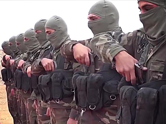 Эксперты сомневаются в подлинности призывов главы ИГ о прекращении боев