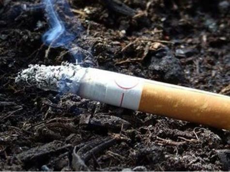 Табачные изделия ижевске картридж на сигарету купить