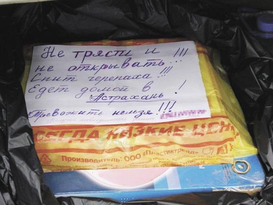 Знаменитая черепаха-путешественница вернулась из Иванова в Астрахань на фуре
