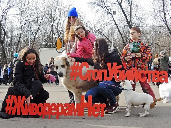 Москвичи вышли на митинг против догхантеров: опасность бродячих животных преувеличена