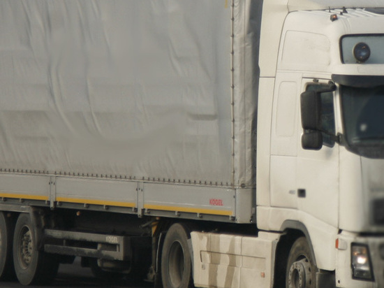 В Ленобласти задержали эстонский грузовик с 266 кг гашиша