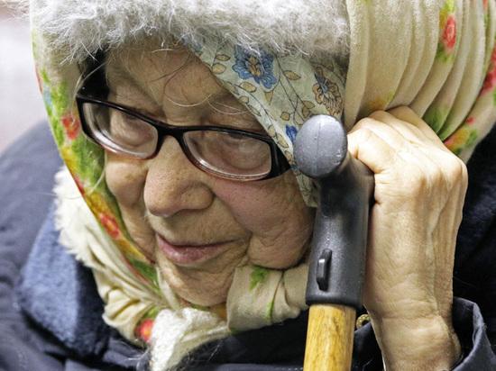 В Госдуме назвали безумием попытки настроить действующую пенсионную систему