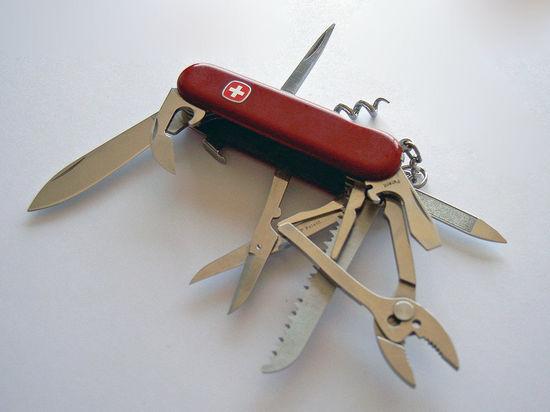 У жительницы Подмосковья в Госдуме украли дорогой нож