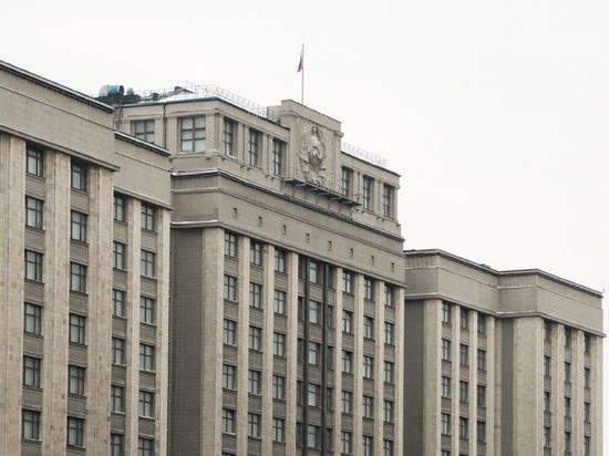 В Госдуме объяснили принятие «закона Тимченко»: «Проблему надо решить сейчас»