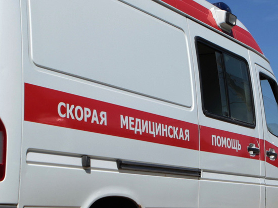 Бойня во дворе на севере Москвы: водитель расстрелял лежачего пешехода