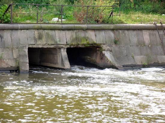 Экологи ищут виновных в сбросе керосина в подмосковный пруд