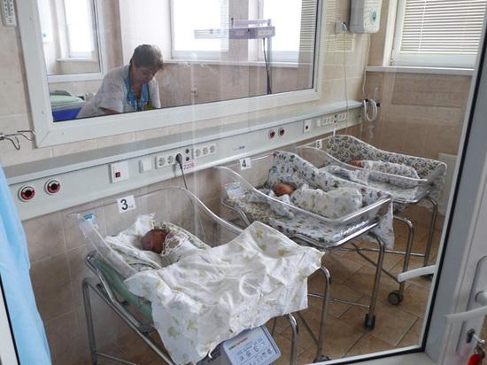 В Совфеде задумались о запрете суррогатного материнства в России