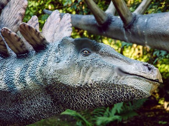 Палеонтологи впервые обнаружили эрогенные зоны у динозавров